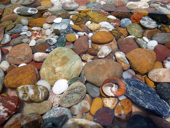 A collection of rocks from the beach.